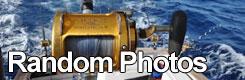 Big Game Fishing Croatia - Random photos